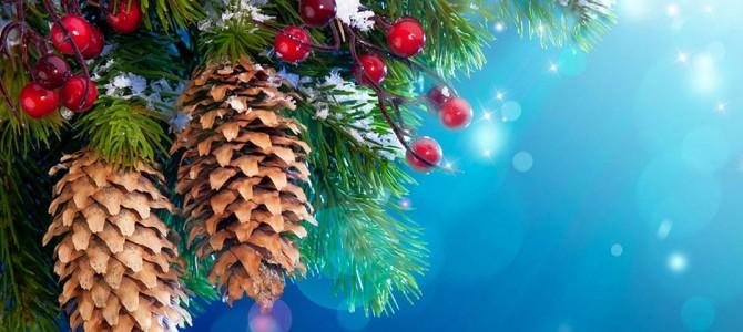 26 december Extra Weerselose Markt + Kerstplein