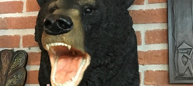 Stoere beer